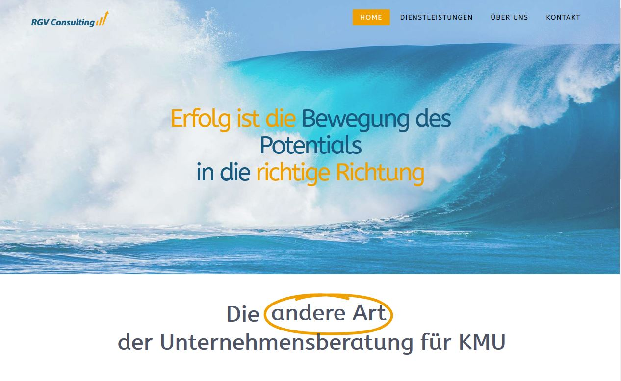 www.rgv-consulting.ch